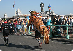 Running in Brighton Marathon - image taken by Janice Tipping