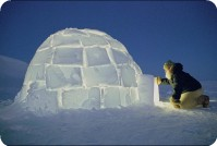 Igloo welcome, frozen north
