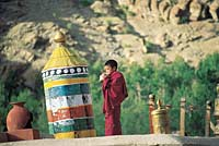 Young monk blowing conch; Hemis monastery roof, Ladakh