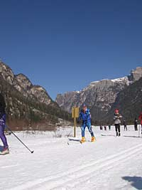 Cross-country skiing at Dobbiaco