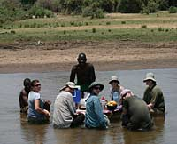 Lunch in the river, Lower Zambezi National Park