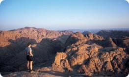 Looking out over Mount Sinai