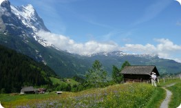 Springtime in the Bernese Oberland