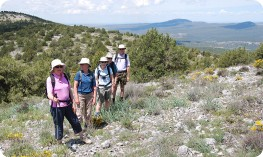 Walking in the Sierra de las Mamblas