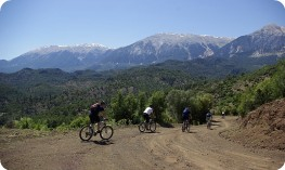Group biking in Turkey