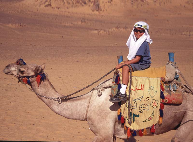 Child on a camel