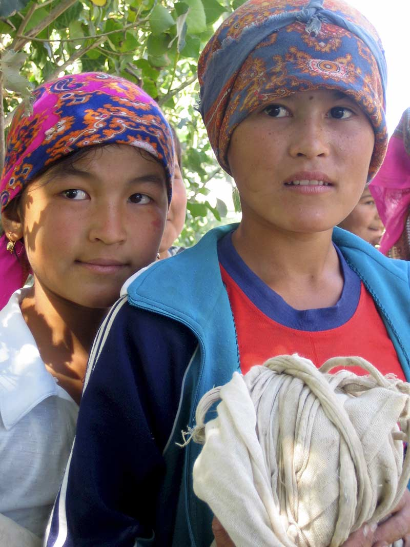 Girl cotton pickers, Uzbekistan or Kyrgyzstan