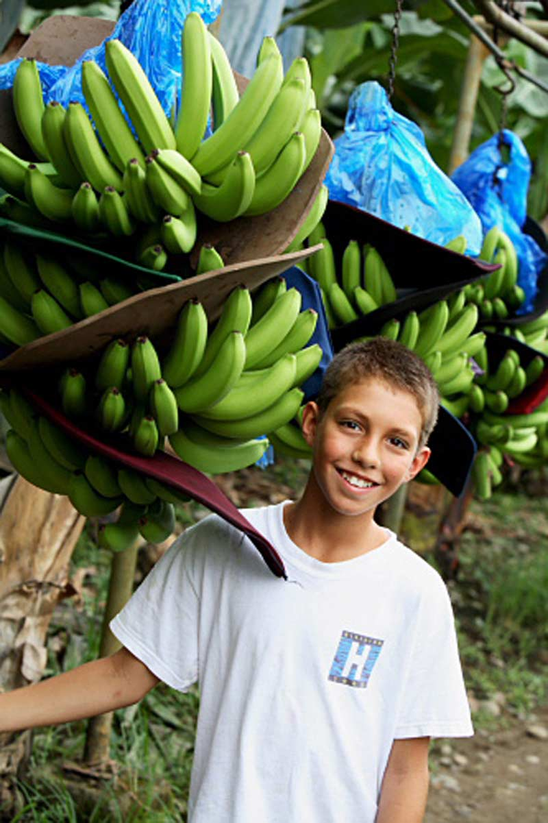 Kid in banana plantation