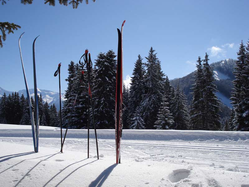 Skis on cross-country track