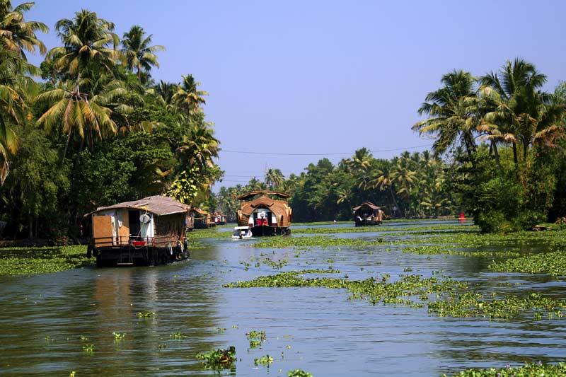 Houseboats on backwaters